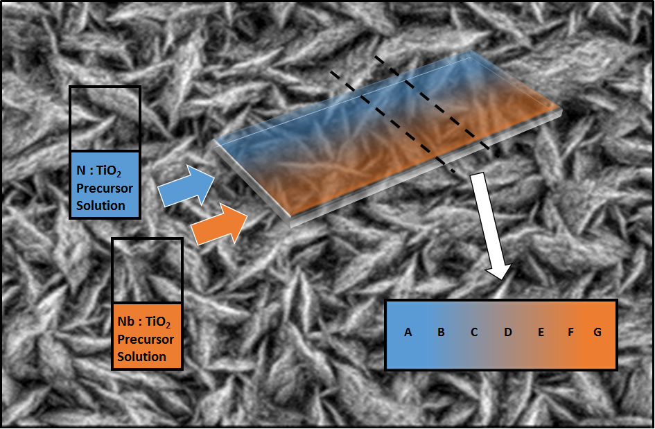 nitrogen and niobium co-dopants