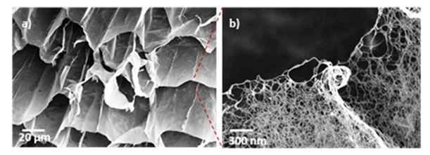 SEM images of Novel Carbon nanotube-based aerogels